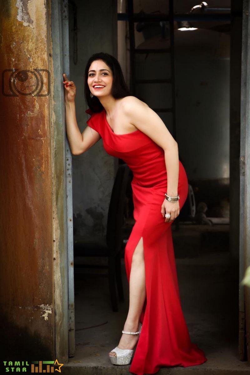 Actress Komal Sharma Photos (13)