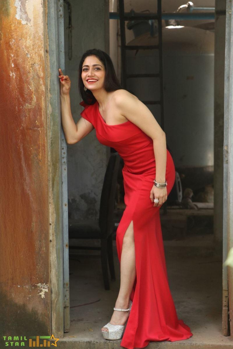 Actress Komal Sharma Photos (14)